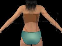 Back - Spate
